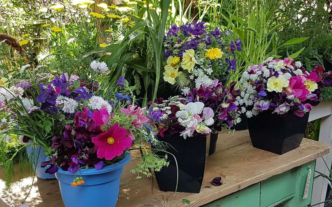 Flowers on Table Image