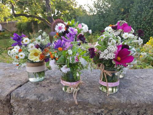 Flowers in jars on Wall